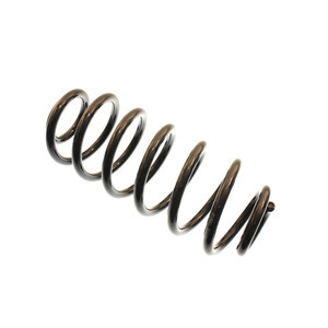 Bilstein B3 OE Replacement (Springs) Coil Spring Cadillac Escalade Rear 199021
